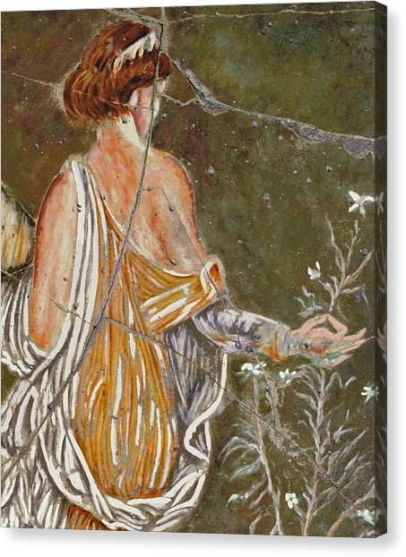 Bogdanoff Canvas Print - Flora - Study No. 1 by Steve Bogdanoff