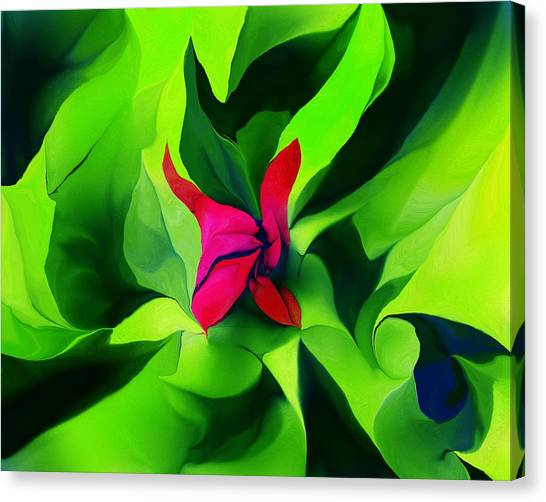 Canvas Print - Floral Abstract Play by David Lane