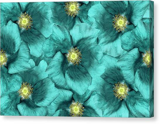 Printmaking Canvas Print - Floral  Background .turquoise Flowers by Fnadya76