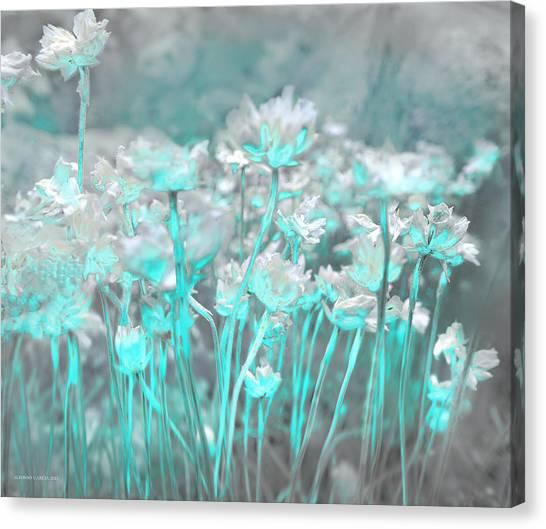 Flores De Roca Canvas Print