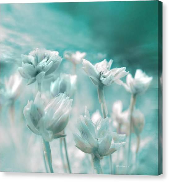 Flores Secas II Canvas Print