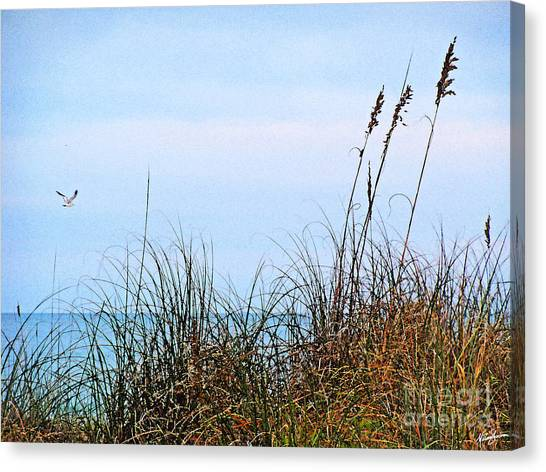 Florida Dunes Canvas Print