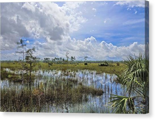 Florida Everglades 0173 Canvas Print