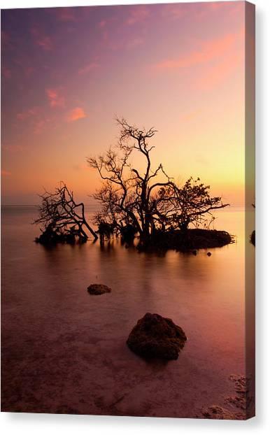 Carribbean Canvas Print - Florida Keys Sunset by Mike  Dawson