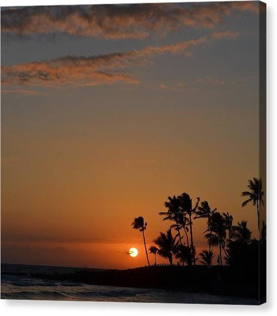 Palm Trees Sunsets Canvas Print - Florida Sunsets by Alexa V