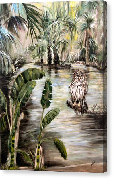 Florida's Barred Owl Canvas Print