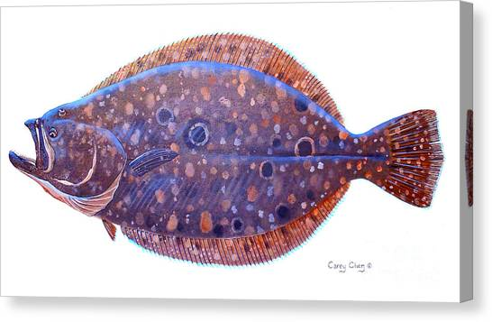 Catfish Canvas Print - Flounder by Carey Chen