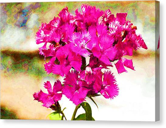 Canvas Print featuring the photograph Flourish by Yew Kwang