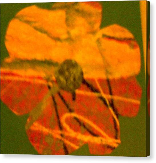 Flower 1 Canvas Print by Dorothy Rafferty