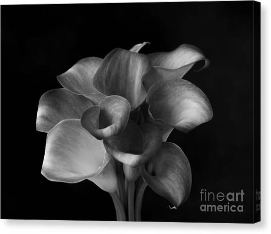 Flower #367 Canvas Print