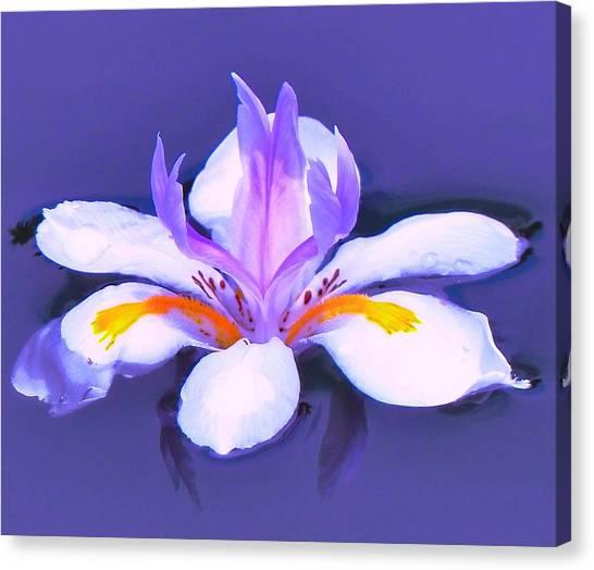 Flower Angel Canvas Print