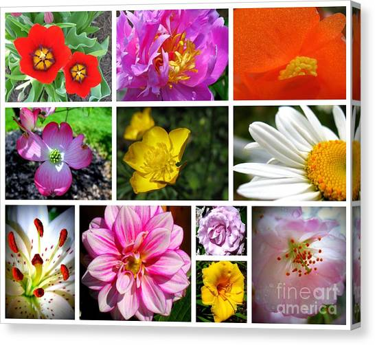 Canvas Print featuring the photograph Flower Collage by Patti Whitten