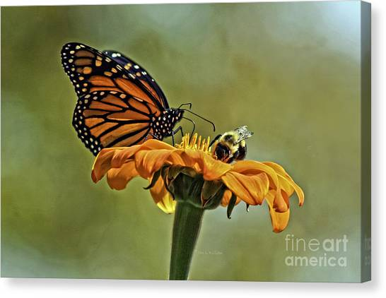 Flower Duet Canvas Print