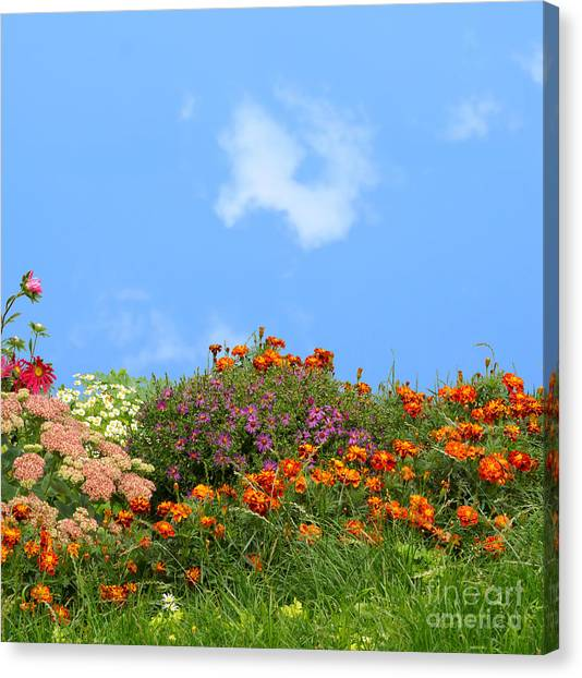 Flower Landscape Art Canvas Print by Boon Mee