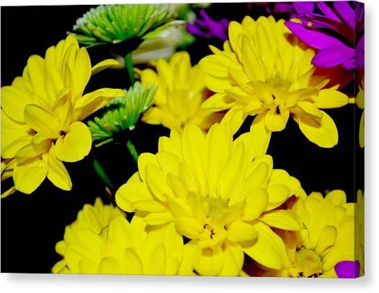 Flower Power Canvas Print by Victoria Clark