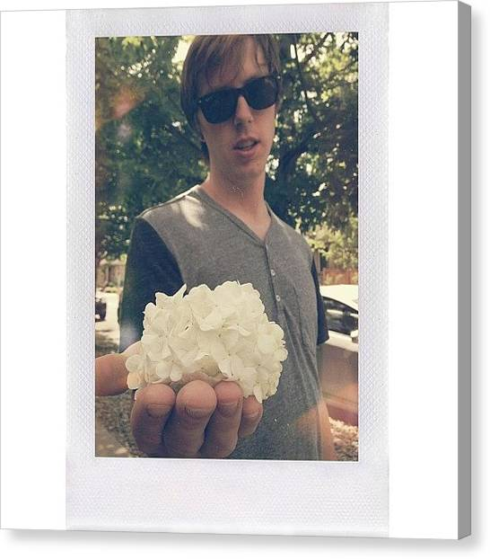 Snowball Canvas Print - #flower #snowball #facesjeffmakes by Valaree Hoge