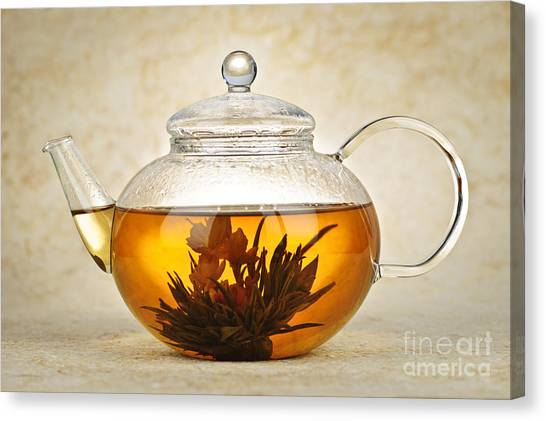 Tea Canvas Print - Flowering Blooming Tea by Elena Elisseeva