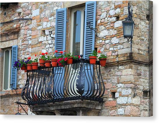 Flowers 3- Assisi Canvas Print