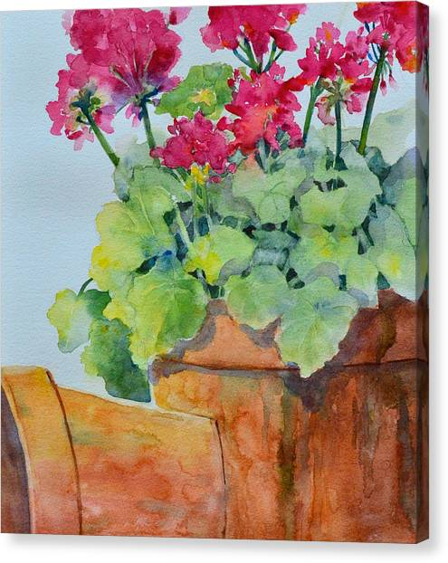 Flowers And Clay Pots Canvas Print