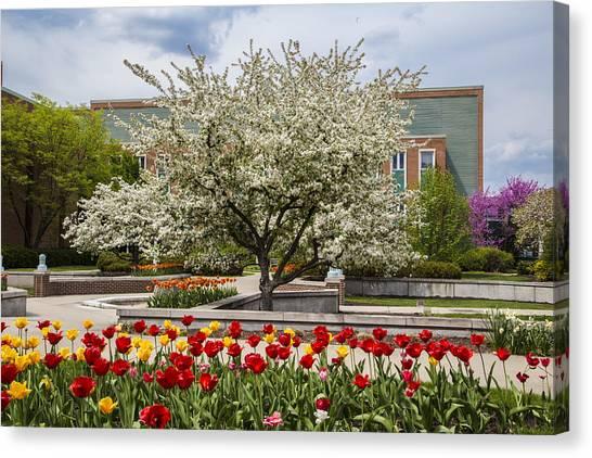Michigan State University Canvas Print - Flowers And Tree At Michigan State University  by John McGraw
