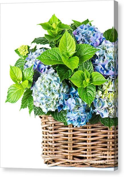 Flowers In Basket Canvas Print