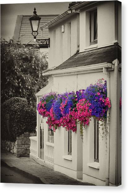 Flowers In Cashel Canvas Print