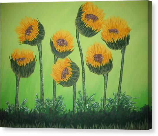 Flowers In Menopause  Canvas Print