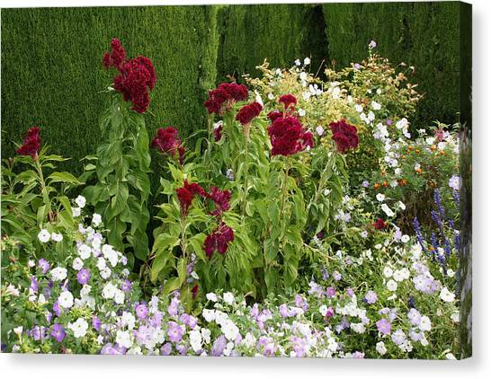 Flowers Of Alhambra Canvas Print