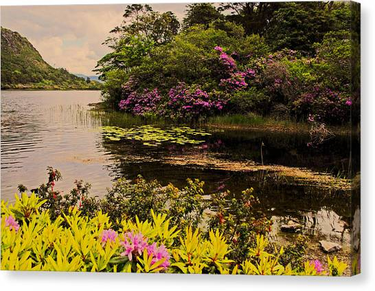 Flowers Of Ireland Lakes Canvas Print