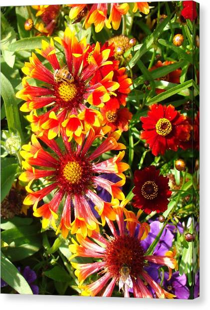 Flowers With Pollinators Canvas Print by Van Ness