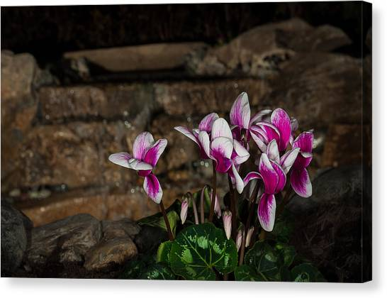 Flowers With Waterfall Backdrop Canvas Print