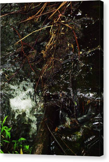 Flowing And Churning Of The Kaaterskill Canvas Print