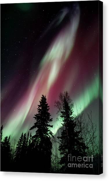 Yukon Canvas Print - Flowing Colours by Priska Wettstein