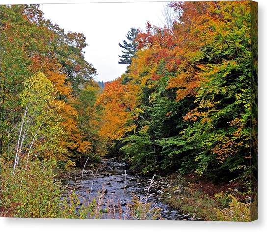 Flowing Into October Canvas Print