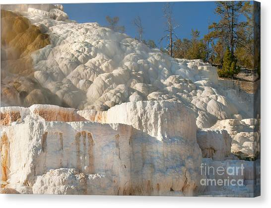 Flowing Minerals Canvas Print