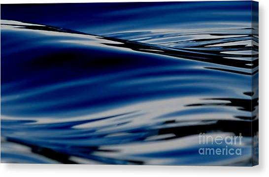 Flowing Movement Canvas Print