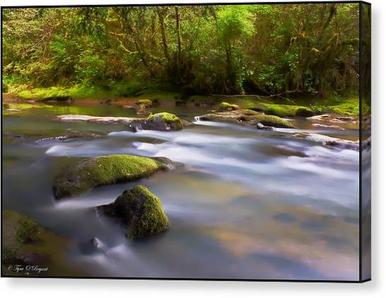 Flowing Serenity Canvas Print