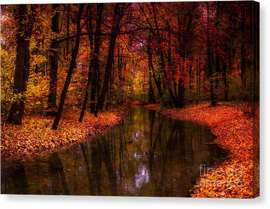 Flowing Through The Colors Of Fall Canvas Print