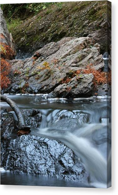Flowing Water Canvas Print