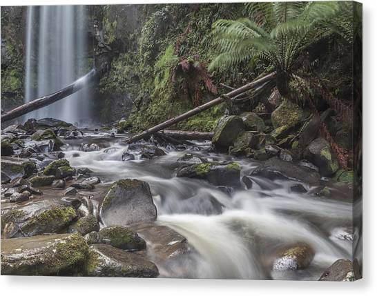 Great Otway National Park Canvas Print - Flowing Waters by Shari Mattox