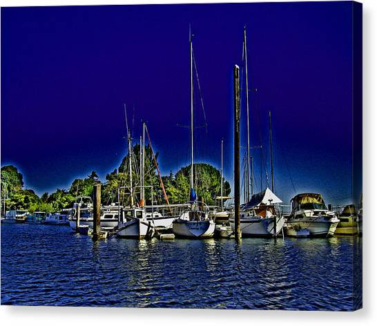 Floyd On The Delta Loop Canvas Print