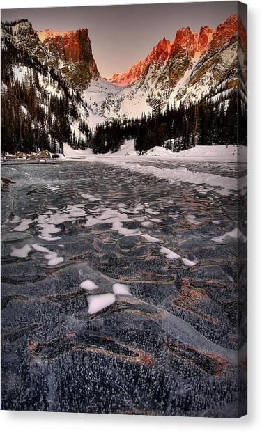 Flozen Dreams Canvas Print
