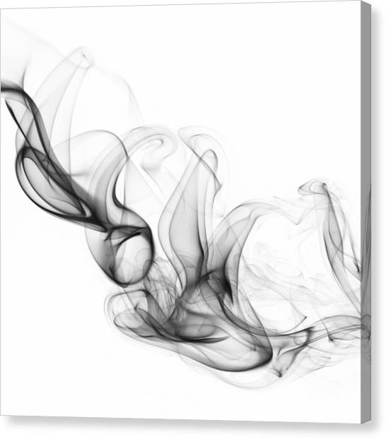 Fluidity No. 2 Canvas Print