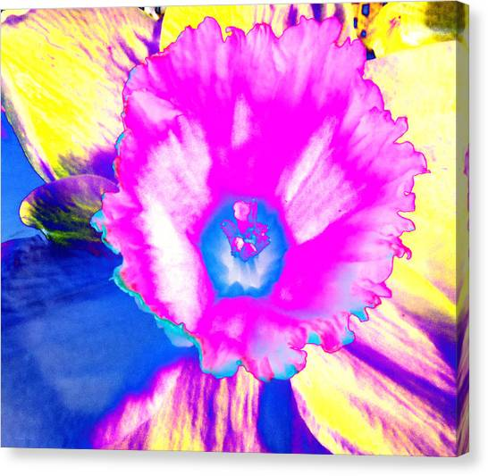 Fluorescent Daffodil  Canvas Print