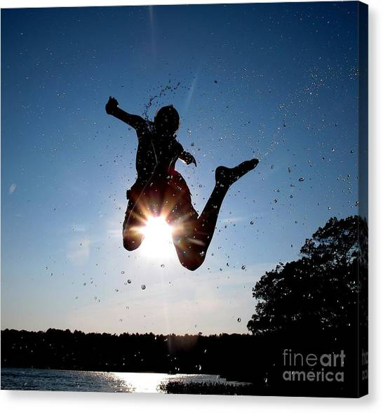 Fly 2 Canvas Print