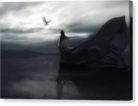 Dove Canvas Print - Fly To You by Terry F
