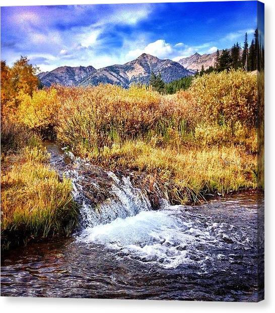 Idaho Canvas Print - #flyfishing #idaho #mybackyard by Cody Haskell