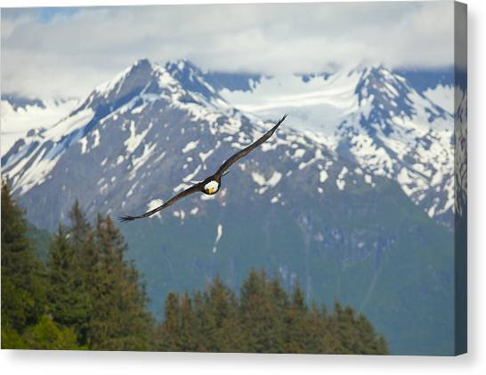 Flying Amongst The Mountains Canvas Print by Tim Grams