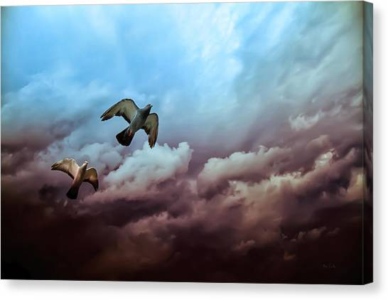 Pigeons Canvas Print - Flying Before The Storm by Bob Orsillo