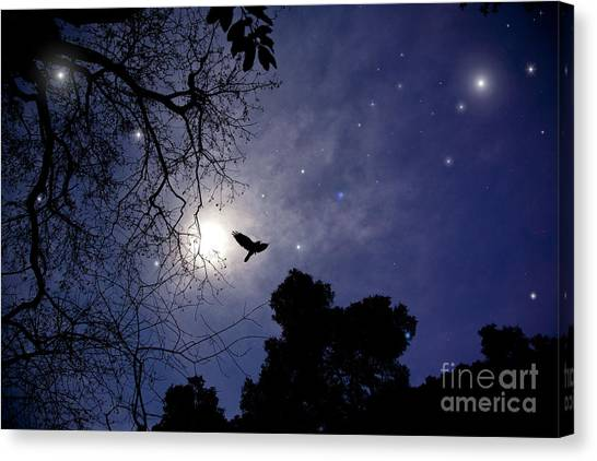 Flying By The Moon Canvas Print